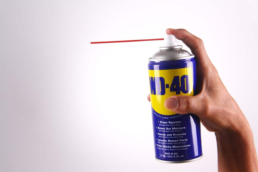 How to get rid of carpenter bees wd40